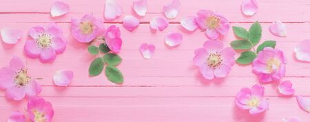 frame of pink roses on pink wooden background