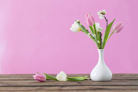 tulips in white vase on pink background 免版税图像