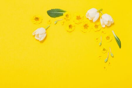 spring flowers on yellow background Stock Photo