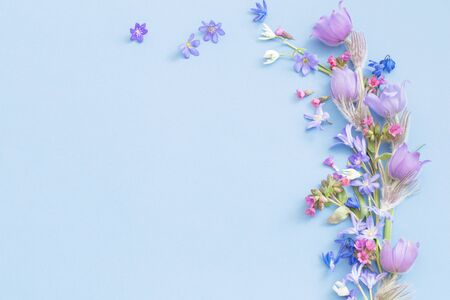 beautiful spring flowers on blue background