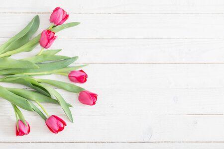 tulipes roses sur fond de bois blanc