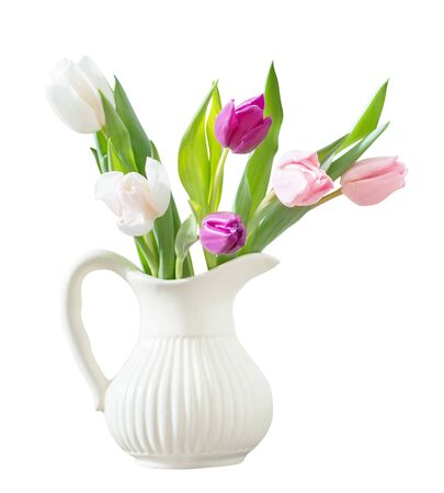 pink tulips in white ceramic jug isolated on white background