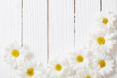 white chrysanthemum on white wooden background 版權商用圖片