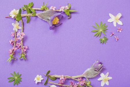 spring flowers on violet background