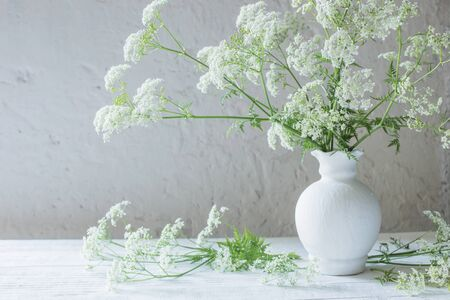 white wild flowers in vase on white background Stock Photo