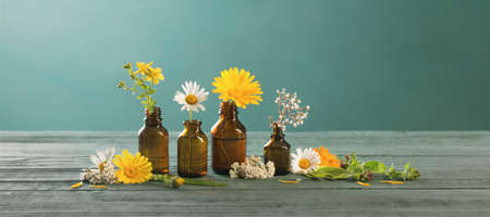 medicinal plants and brown bottles on green background