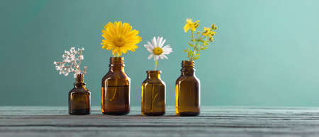 medicinal plants and brown bottles on blue background