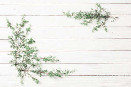 juniper branches on a white wooden background. Christmas and New Year background