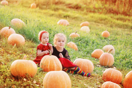 two little girls with orange pumpkins at sunset Stock fotó