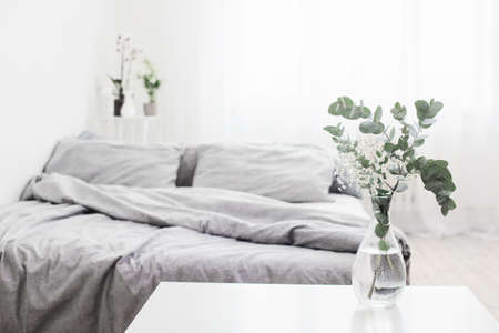 eucalyptus in glass vase in white bedroom Foto de archivo