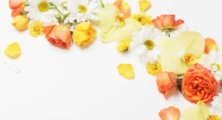 beautiful yellow and orange floral pattern on white background Foto de archivo