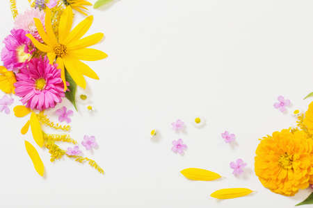 yellow and pink flowers on white background Foto de archivo - 155425012
