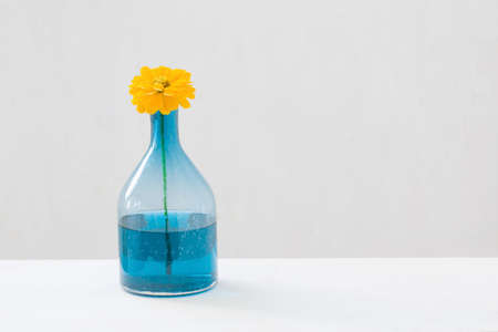 yellow flowers in glass vase on white background Foto de archivo - 155696193