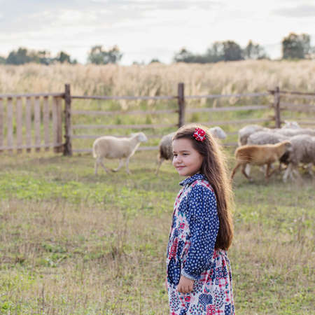 happy little girl with sheeps on farm