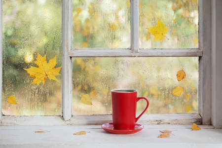 cup of tea on white wooden windowsill in autumn