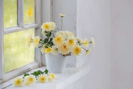 chrysanthemums in vase on windowsill in autumn Foto de archivo - 157686230