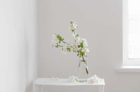 apple flowers in glass vase in white interior 免版税图像