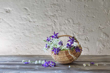 summer flowers in basket on background white wall Stock Photo
