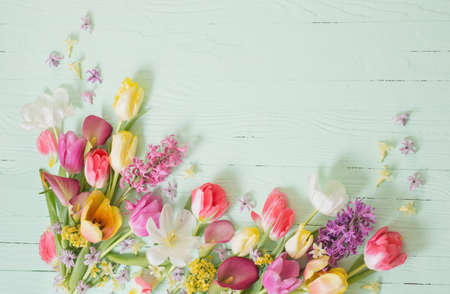 spring flowers on green wooden background Archivio Fotografico