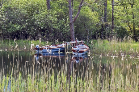 Rowing boats in a lake photo
