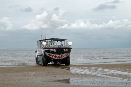 amphibious: Amphibious vehicle on the beach