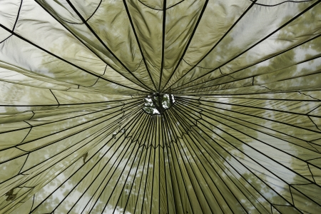 plains indian: Abstract picture of the top of a teepee with the trees shining through