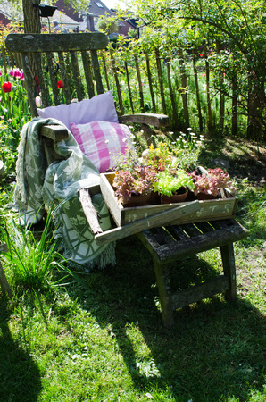 Wooden garden chair with decorations in a garden photo