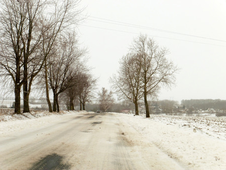 dangerous road: Dangerous road wit snow and trees Stock Photo
