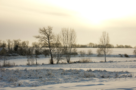 winter blues: Sunrise on a Hungarian landscape with snow