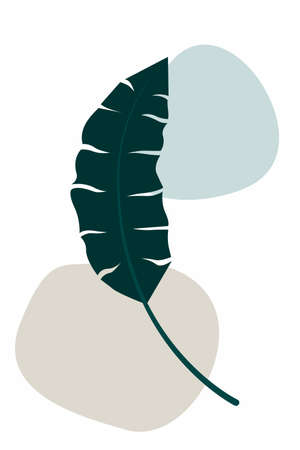 tropical leaves. Outline Modern Boho Minimalist Style. Vector Illustration. For printing on t-shirt, Web Design, beauty Salons, Posters, creating a logo