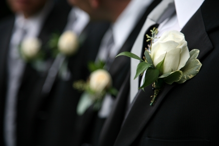 boutonniere: Boutonnieres on black Suits of men Stock Photo