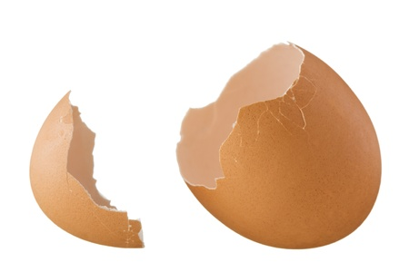 two and a half: Eggshell isolated on white background