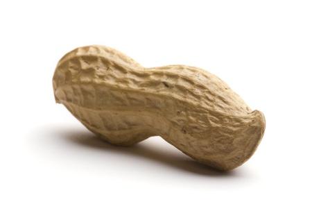 Peanut isolated on white background photo