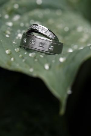 Dva snubní prsteny na zelený list