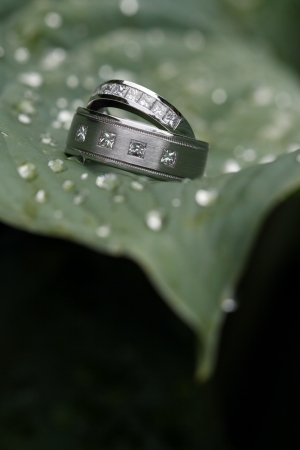 Two wedding rings on a green leaf Stock Photo