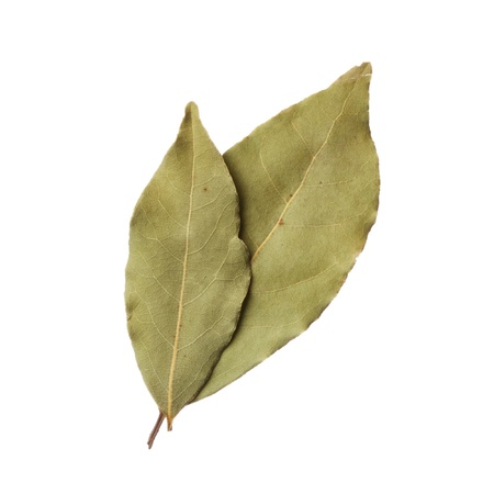 dried leaf: Bay leaves isolated on white background