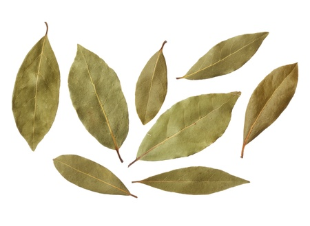 dried herbs: Bay leaves isolated on white background