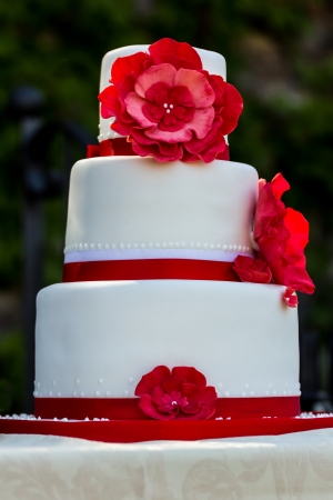 Wedding cake with flowers Stock Photo - 23245076