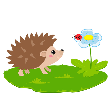 Vector flat illustration of cute cartoon hedgehog walking on grass with flower and ladybug, isolated on white background
