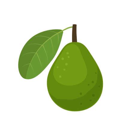 Guava fruit icon flat design vector illustration