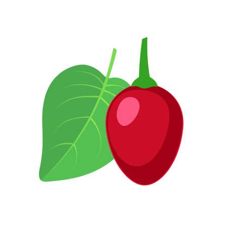 Tamarillo fruit icon flat design vector illustration