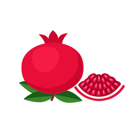 Pomegranate whole fruit with piece flat design