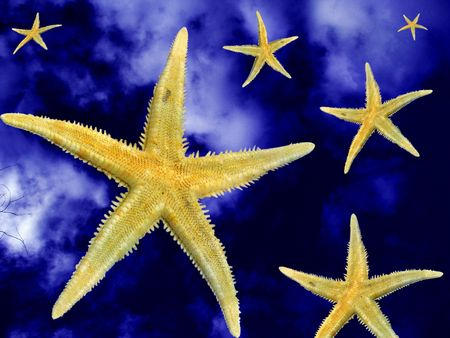 resplendence: right stars on wrong places Stock Photo