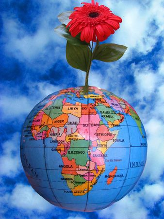 protectorate: flower grow from the earth Stock Photo