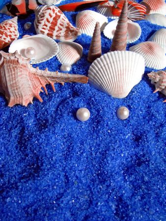 under the sea Stock Photo