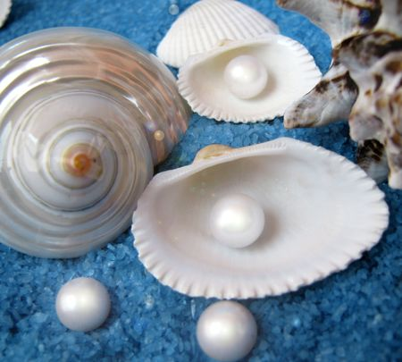 farmed: pearls and shells