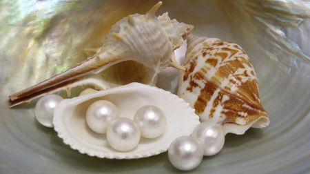 farmed: shells and pearls Stock Photo