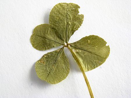 fortunateness: good luck