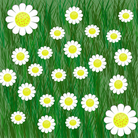 2d white flowers on green grass Vector