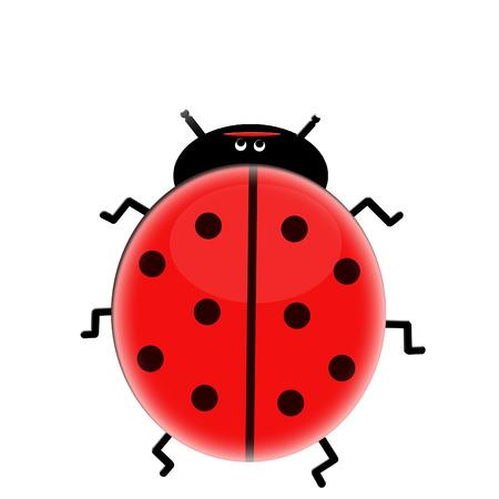 2d ladybug Vector